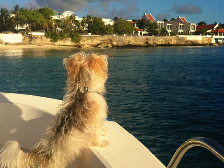 Go Boating