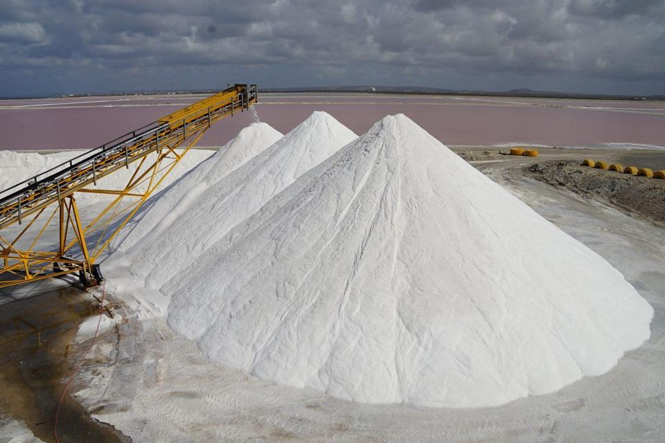 Salt Being Readied For Export