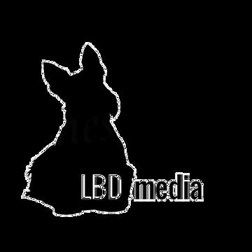 LBD Media Transparent.png