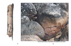Nature art stone face