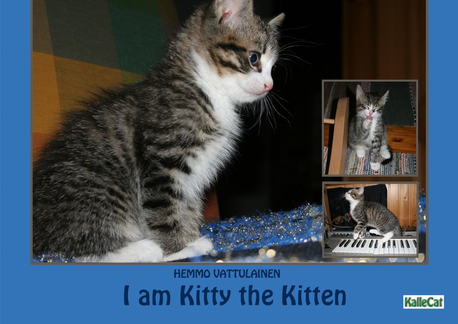 बिल्ली चित्र पुस्तक