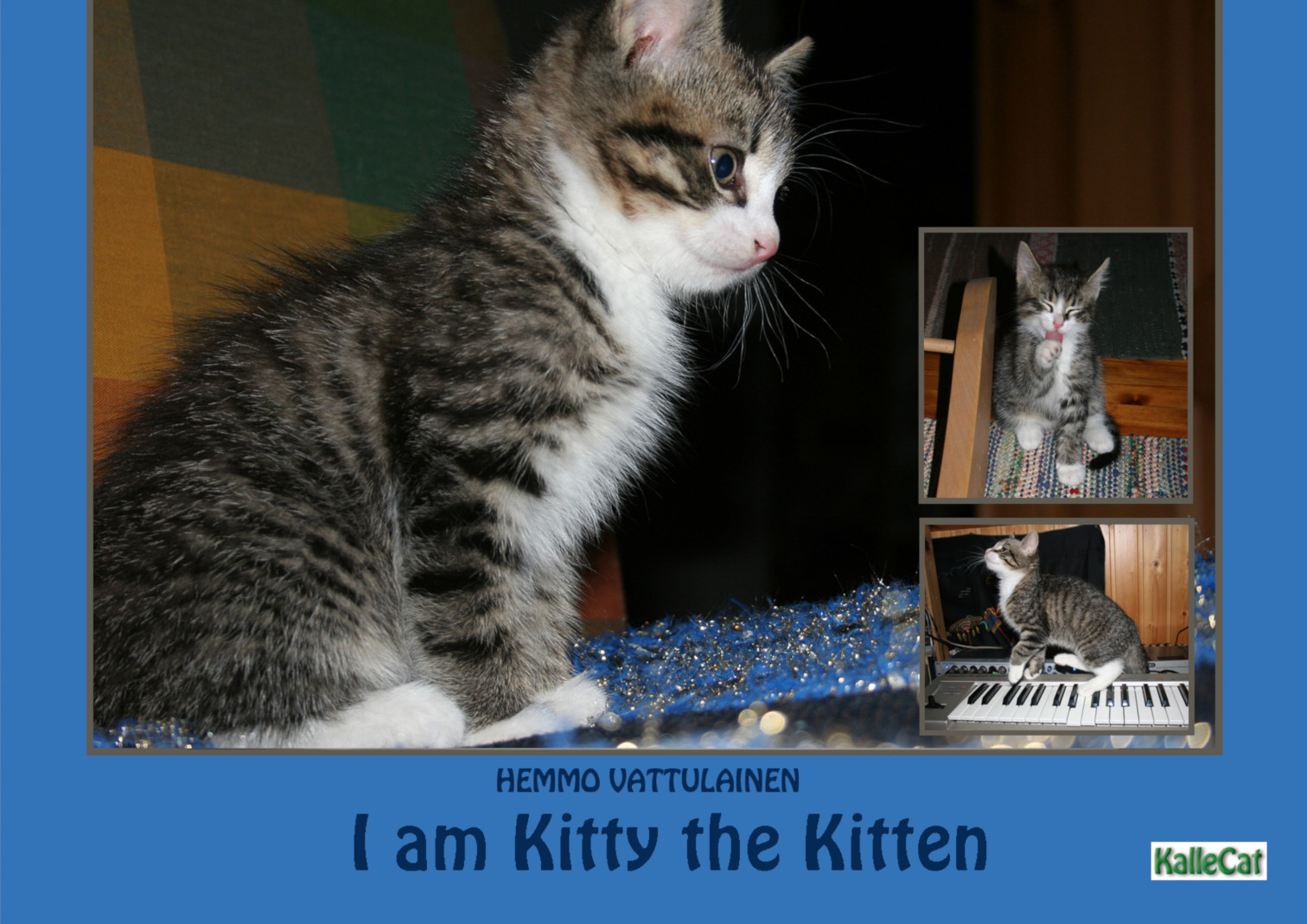 kitten Photo eBook