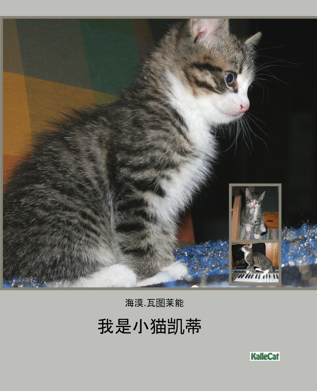 我是小猫凯蒂/照片书