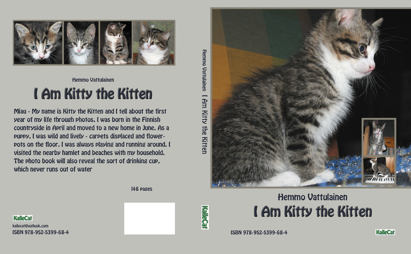 Kitten book English