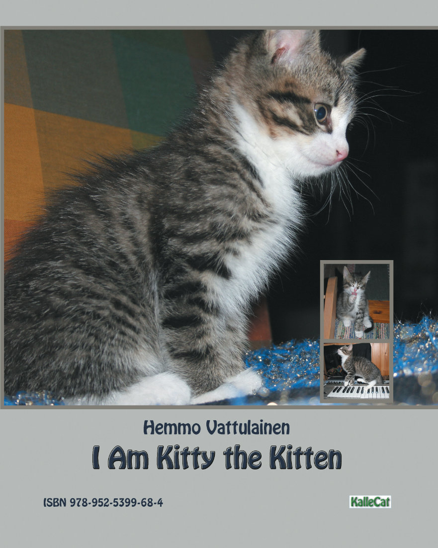 Fun kitten book