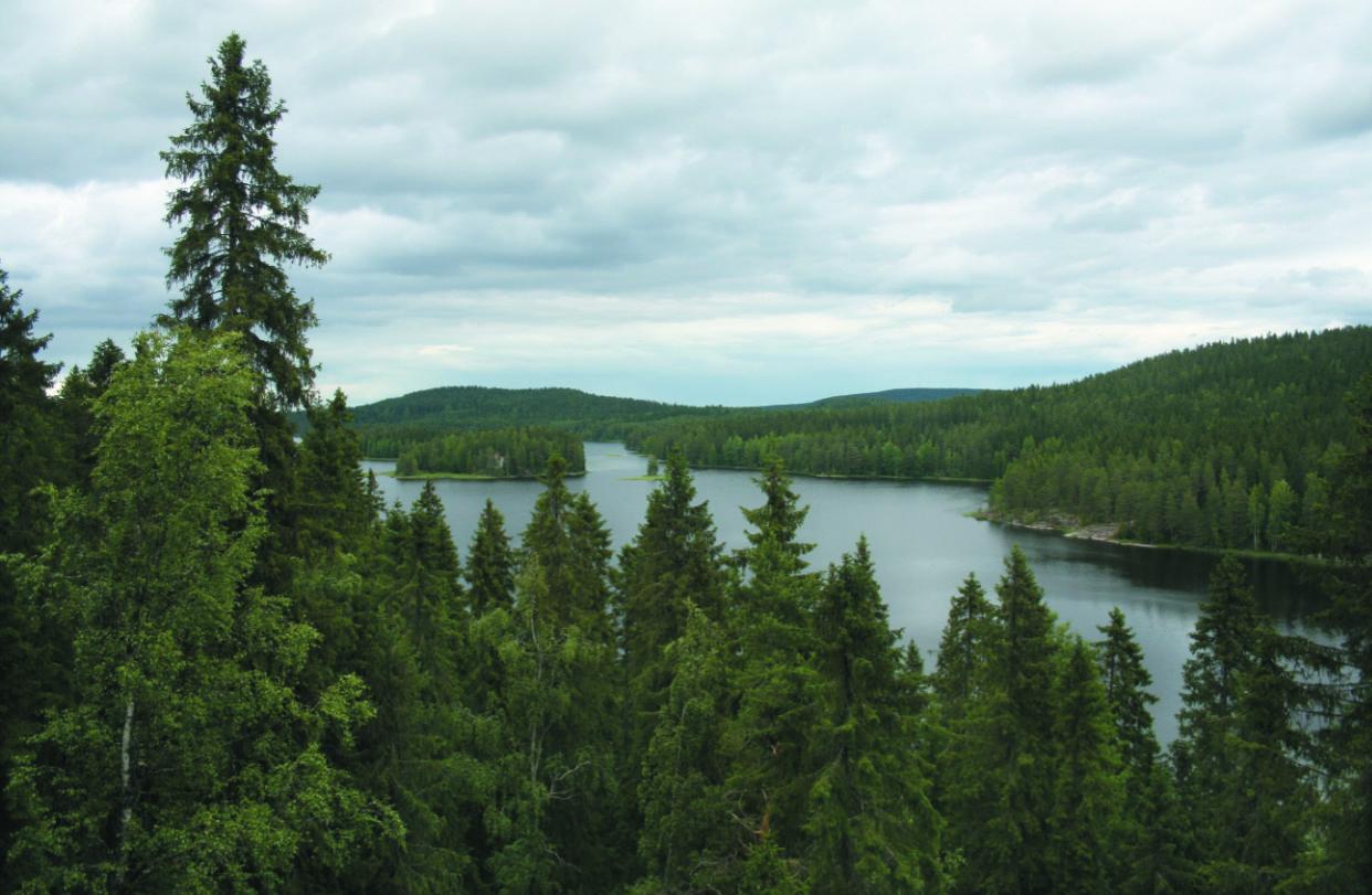 landscape Finland