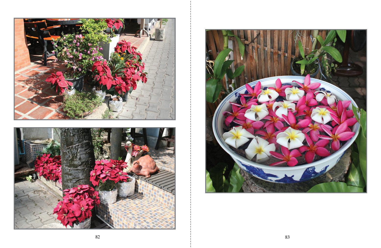 Pattaya kukka-asetelmia