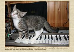 Kittys 3 Sinfo
