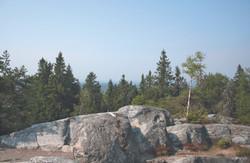Koli nationalpark Finland