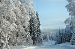 Pohjois-Karjala talvimetsä.