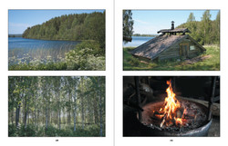 Suomen maisema