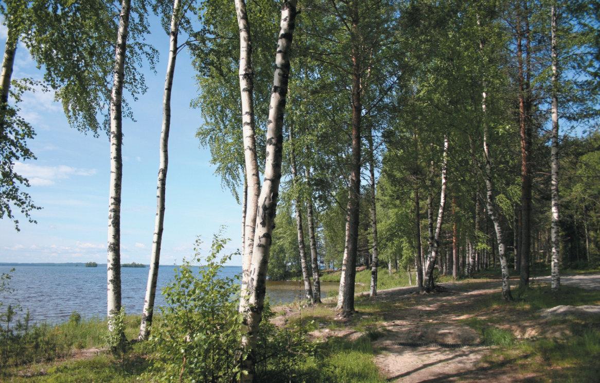 Pohjois-Karjala Höytiäinen