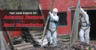 Asbesto Removal