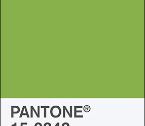PANTONE NAMES GREENERY 2017 COLOR OF THE YEAR
