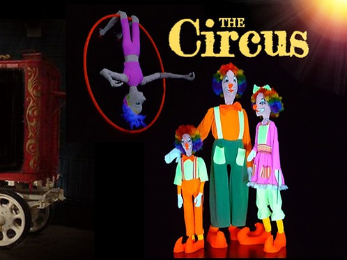 The Circus (Individual Show)