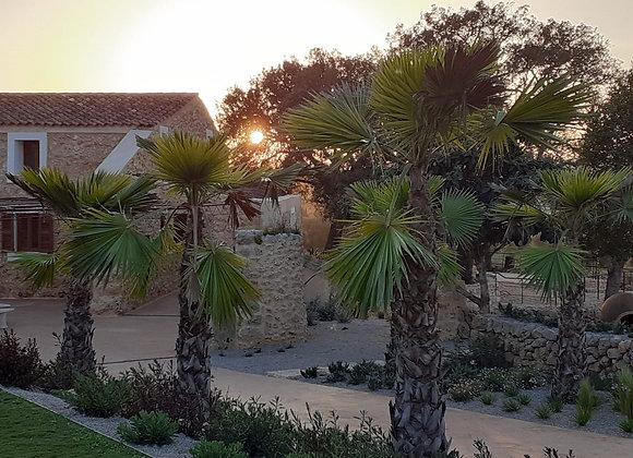 Mallorca Cycling Camp Deposit 25th September - 2nd October 2021