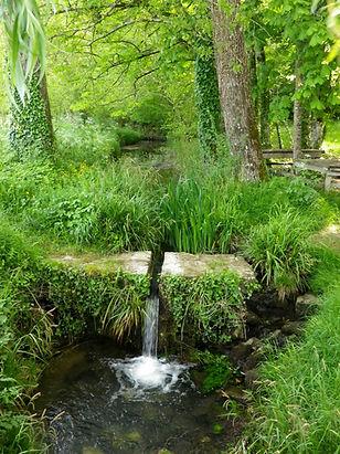 ruisseau de Fontdouce.jpg