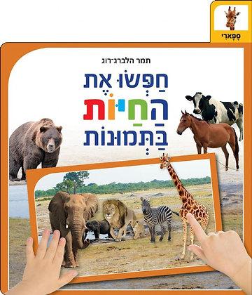 חפשו את החיות בתמונות