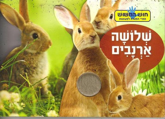 שלושה ארנבים