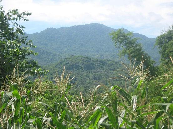 Mount_Banoy.jpg