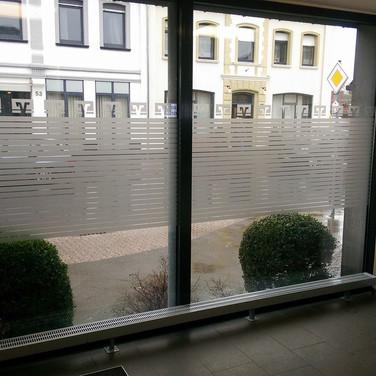 Sichtschutz im Servicebereich Volksbank (Pfalzdorf)