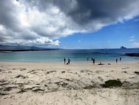 Galapagos Parte II