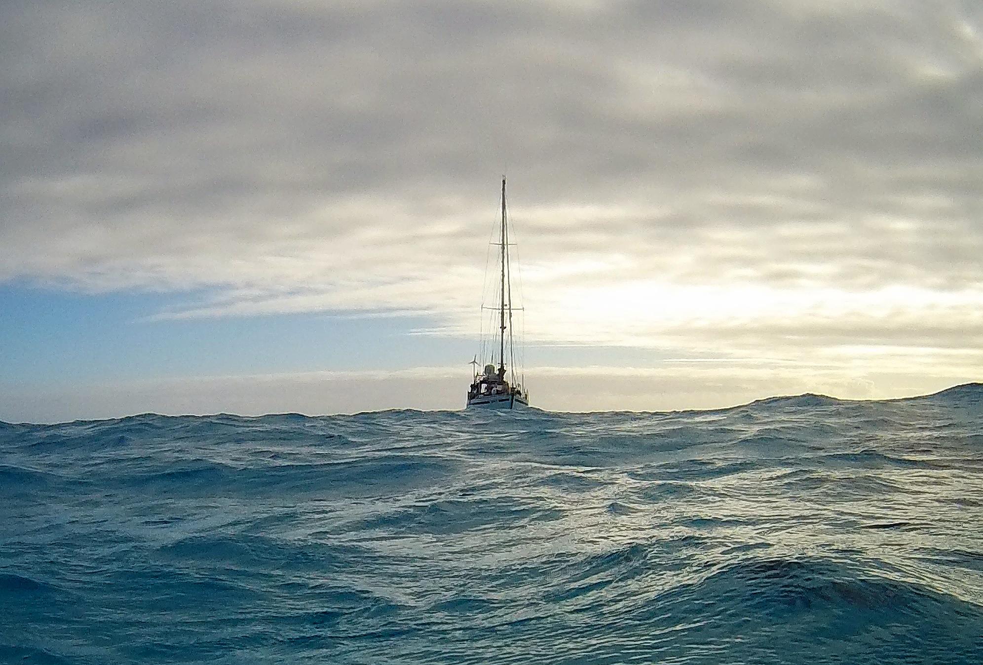 Beveridge Reef solitudine