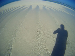 Beveridge Reef disegni sulla duna effimera