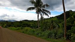 Fiji Vanua Levu l'interno