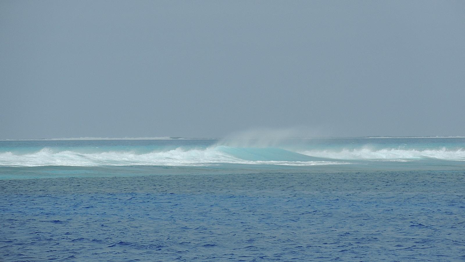 Beveridge Reef si vedono solo i frangenti