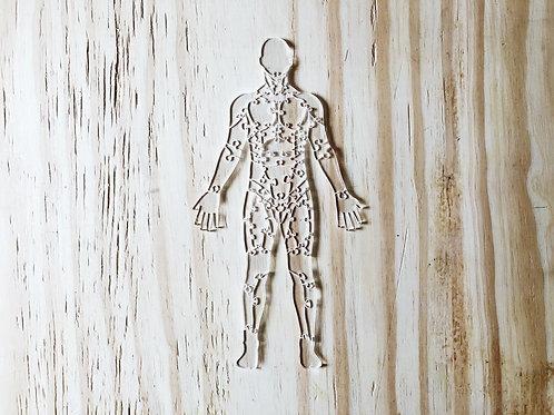 Quebra Cabeça Transparente 65 peças - Corpo Humano Músculos