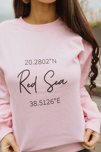 red sea sweatshirt, small group, online study