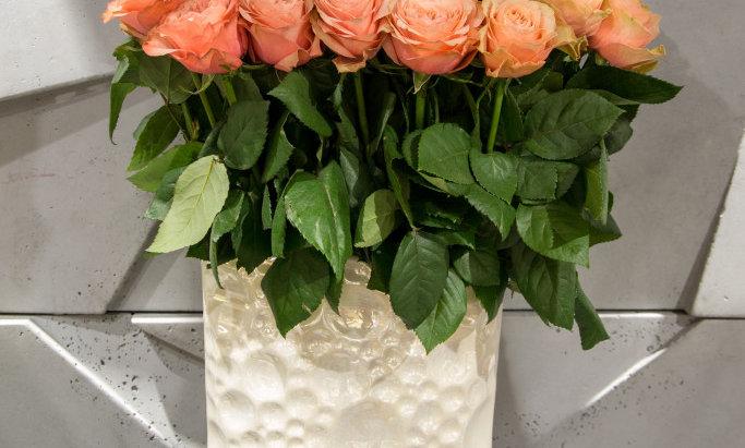 Kreminė rožė