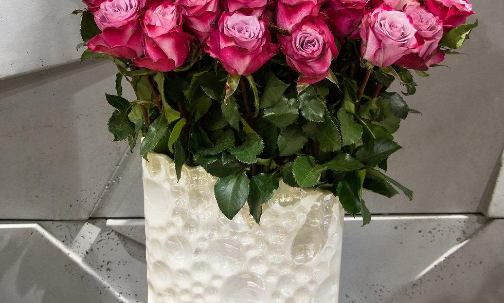 Magenta rožė