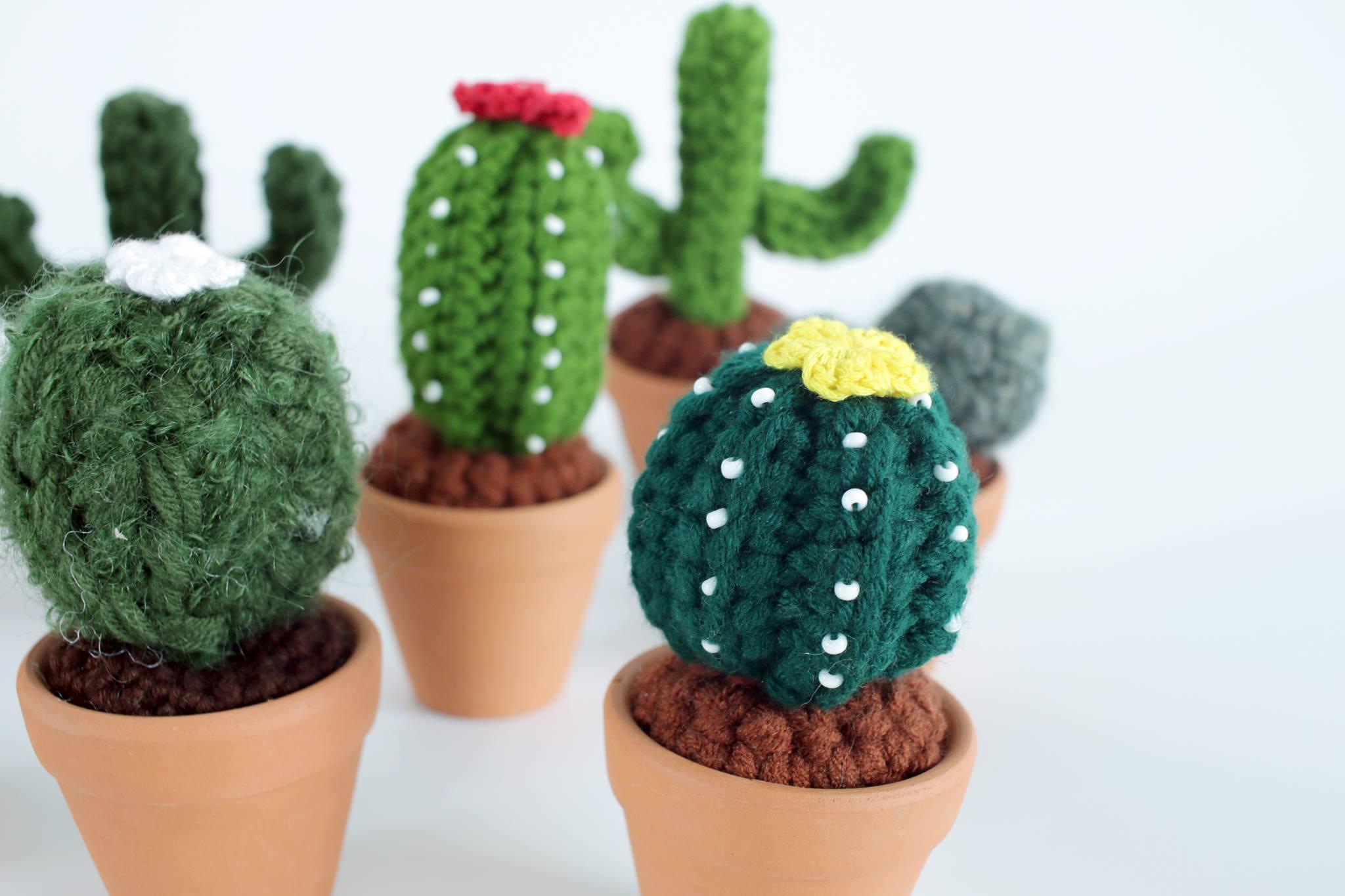 Crochet Cactus Workshop