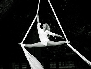 Circus: Aerial in the Park