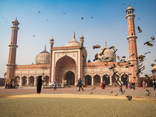 India Part 1: Delhi