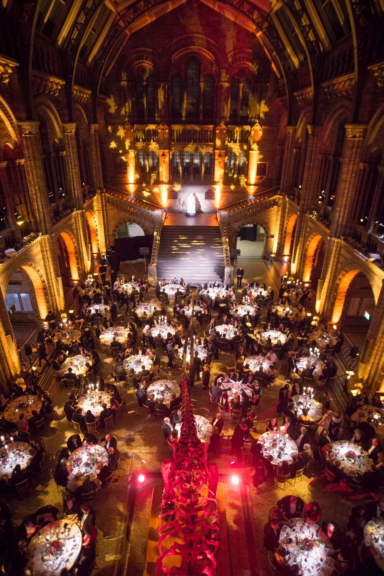 Natural History Museum Dinner