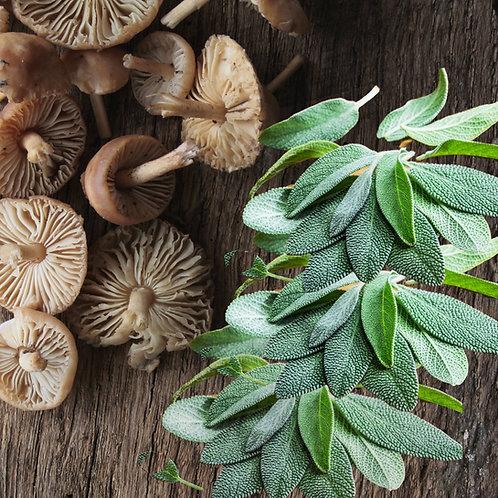 EVOO with Wild Mushroom & Sage