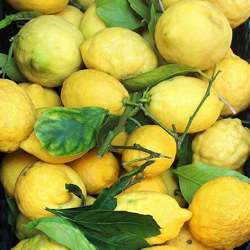 EVOO with Eureka Lemon