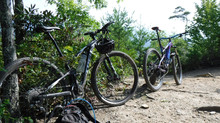 $30 Bike Rentals