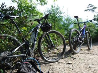 $40 Bike Rentals