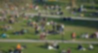 Screen Shot 2020-05-16 at 1.00.58 PM.png