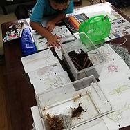 知育・絵画・造形 アトリエ樹乃会 西東京市と新座市「ひばりが丘」の絵画教室 お絵描きや工作が好きな園児・小学生が集う キッズアートクラス・あとりえきのかい