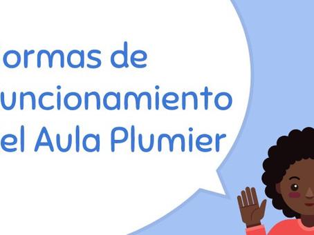 Conociendo el Aula Plumier