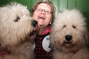 Service Dogs, Hundezucht