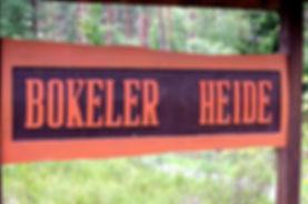 Bokeler Heide
