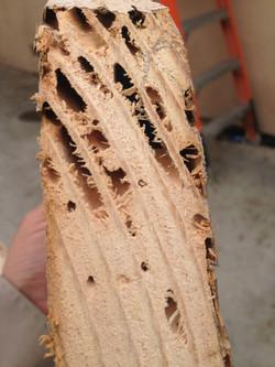 Damage Rafter