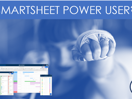 SmartBackup for Smartsheet Power Users