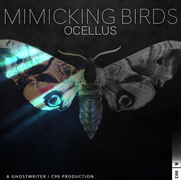 AND_Mimicking Birds_Ocellus - & 003.png